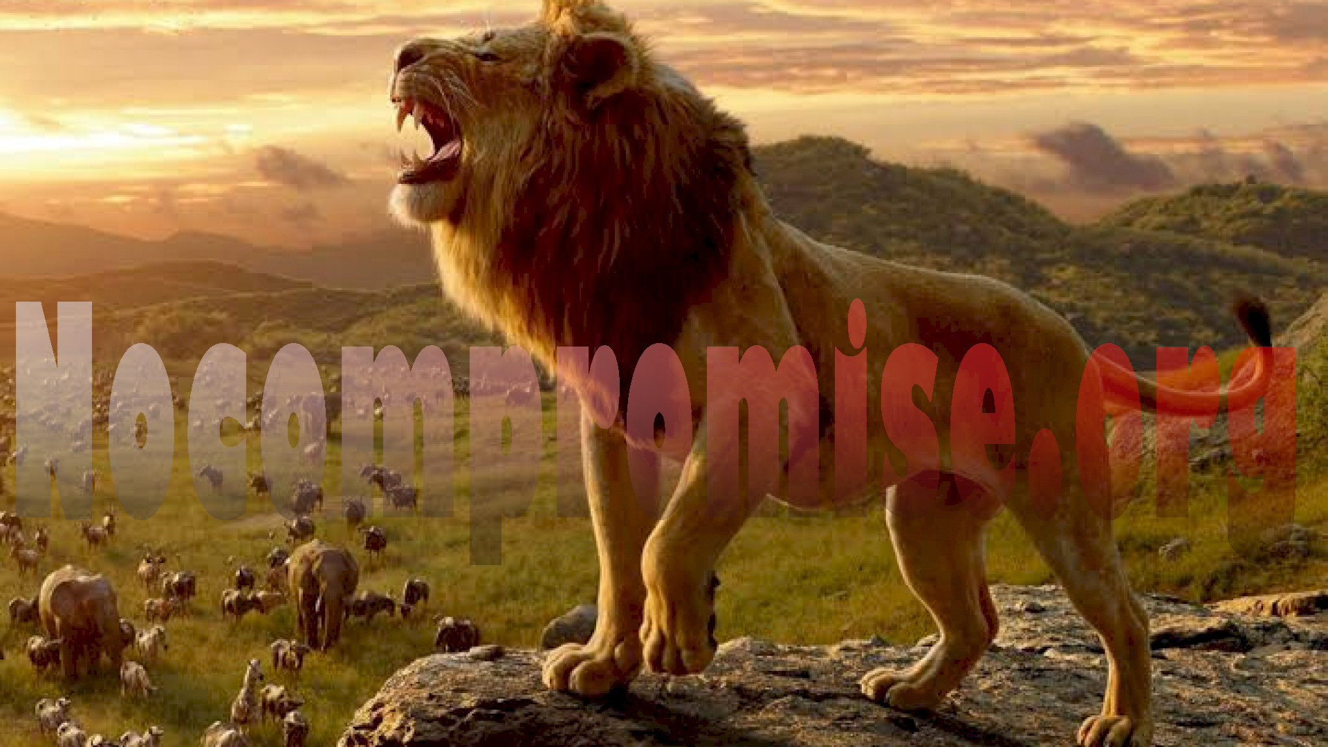 Ahli Biologi Singa Berpendapat Menjaga Hewan Liar Lebih Diprioritaskan